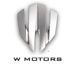 Local car brand ...W Logo Brand